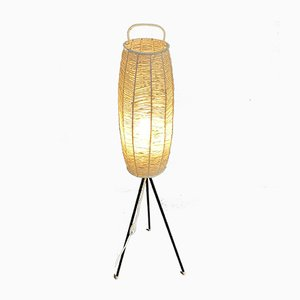 Tripod Floor Lamp, 1950s