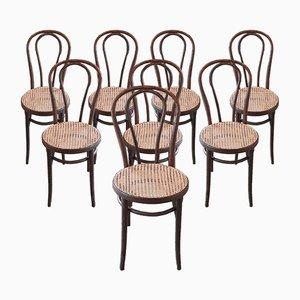 No.18 Esszimmerstühle von Michael Thonet für ZPM Radomsko, 1970er, 8er Set