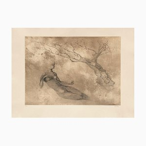 Woman Tree by Ferdinand Springer