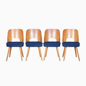Czech Brown & Blue Ash Chairs by Oswald Haerdtl, 1950s, Set of 4