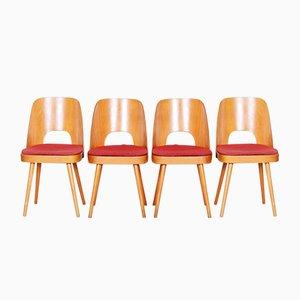Tschechische Sessel in Braun & Rot von Oswald Haerdtl, 1950er, 4er Set