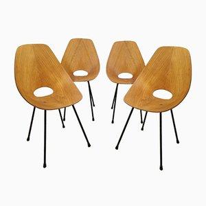 Medea Stühle von Vittorio Nobili für Fratelli Tagliabue, 1950er, 4er Set