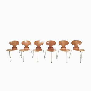 Sedie Ant modello 3100 vintage di Arne Jacobsen per Fritz Hansen, set di 6