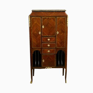Louis XV Storage Cabinet with Precious Wood Marquetry, 1850s