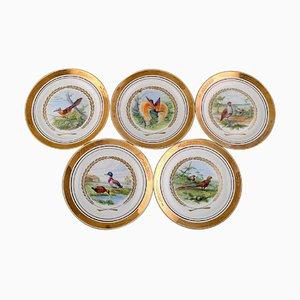 Große Teller mit Vögeln von Royal Copenhagen, 5er Set