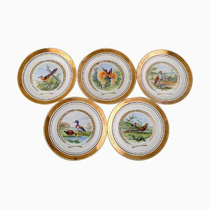 Large Dinner / Decoration Plates with Birds from Royal Copenhagen, Set of 5