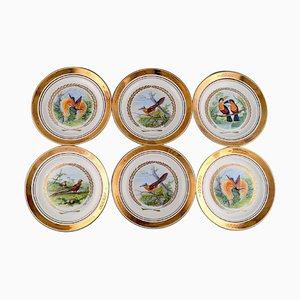Large Dinner / Decoration Plates with Bird Motifs from Royal Copenhagen, Set of 6