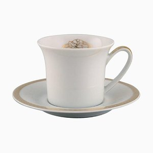 Medallion Meander Golden Mocha Cup with Saucer by Gianni Versace for Rosenthal, Set of 2