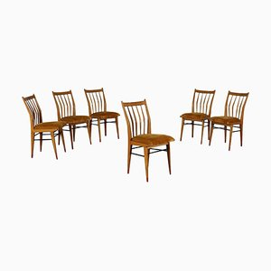 Beech Wood Chairs, 1950s, Set of 6