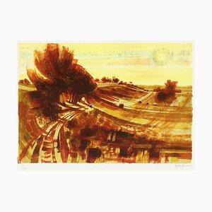 Arbres sur le Chemin de la Bretagne par Michel King