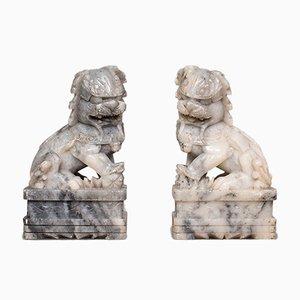 Par, antiguos perros decorativos de Fu, chino, estatua, ornamento, victoriano, 1900. Juego de 2