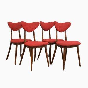 Polnische Esszimmerstühle, 1950er, 4er Set