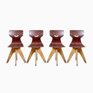 Chaise d'Ecole par Adam Stegner pour Pagholz Flöttoto, 1960s