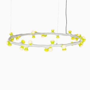 Lampada a sospensione ad anello LEDS Clay di Clay di Bertjan Pot & Maarten Baas