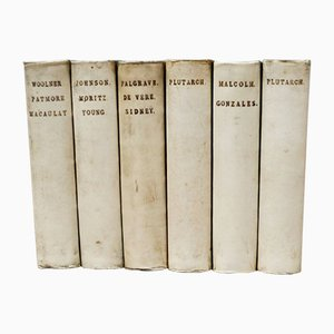 Antique Vellum Bound Books, Set of 6