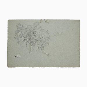 Marcel Mangin, Bäume, Original Bleistiftzeichnung, Mitte 20. Jahrhundert