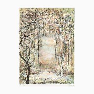 Nieve en el bosque de Antonio Rivera