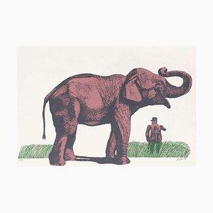 Elefante y general de Antonio Segui