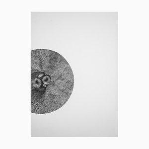 Cell 02 by Alina Aldea