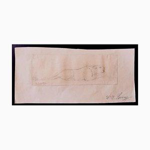 Disegno di Wilhelm Lorenz, Leone, 1932