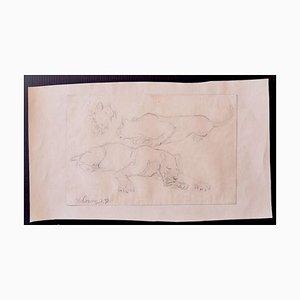 Wilhelm Lorenz, Studie der Löwen, Zeichnung, 1933