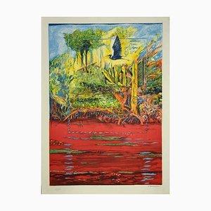 Robert Carroll, Landschaften, Lithographie, 1970er