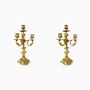Louis XV Gilt Bronze Candlesticks, 1850s, Set of 2
