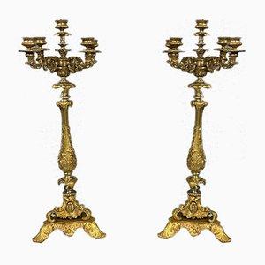 Große Louis XV Kerzenhalter aus vergoldeter Bronze, 1850er, 2er Set