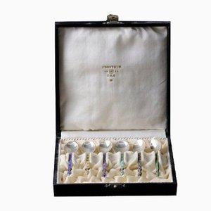 Silberne Löffel mit Emaille in einer Geschenkbox, 6er Set