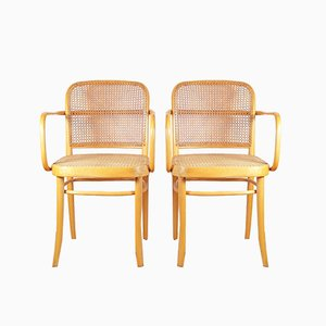 Model 811 F / Prague Chairs by Josef Hoffmann for TON, 1970s, Set of 2