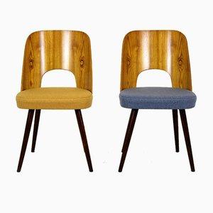Esszimmerstühle von Oswald Haerdtl für Tatra, 1960er, 2er Set