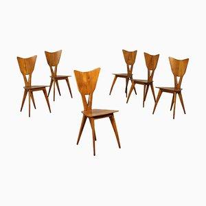 Sesshafte Eichenholz Stühle, Italien, 1940er, 6er Set