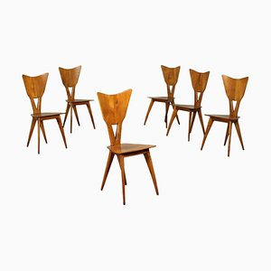 Solid Sessile Oak Chairs, Italy, 1940s, Set of 6