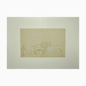 Ignoto, Cavalli arati, acquerello, fine XIX secolo