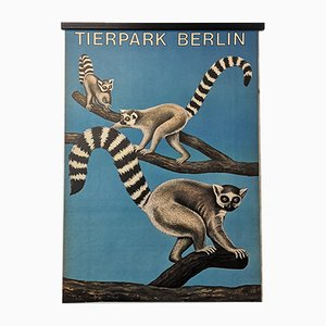 Affiche Zoo Tierpark Berlin Vintage, Allemagne, 1970s