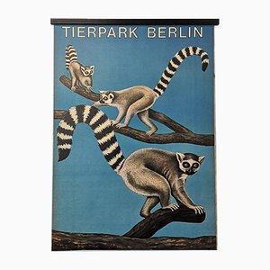 Póster alemán vintage del zoológico de Berlín, años 70