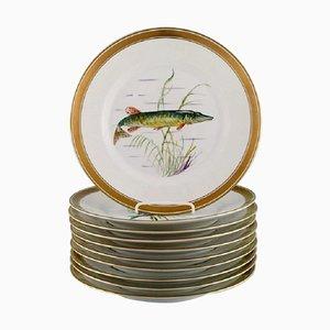 Assiettes en Porcelaine avec Motifs Peints à la Main de Royal Copenhagen, Set de 10