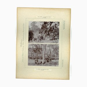 Fotografía vintage del río Wallendelly de Australia, 1893