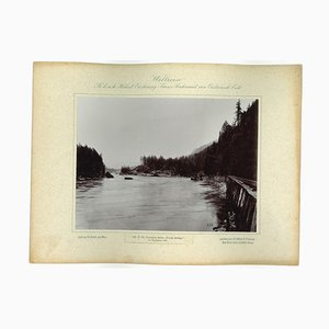 Columbia River, Tooth Bridge, Original Vintage Photo, 1893