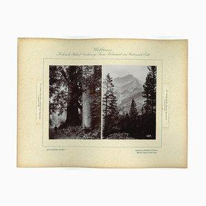 Desconocido, Canada, Cascada Mountains, Photo, 1893 de Prince