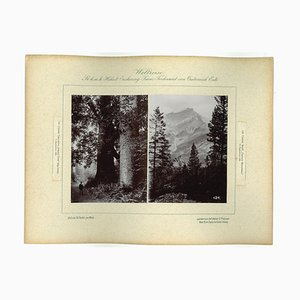 Unknown, Canada, Cascada Mountains, Photo, 1893 by Prince