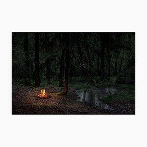Fires 2, Ellie Davies, Fotografie, 2018