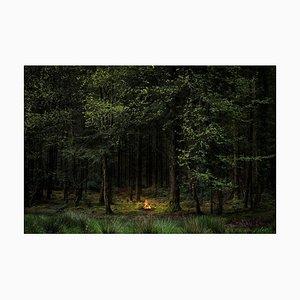 Fires 8, Ellie Davies, Conceptual Photograph, 2018