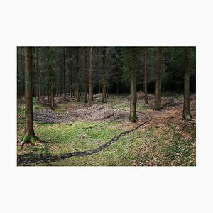 Come With Me 3, Ellie Davies, Fotografie, 1980er
