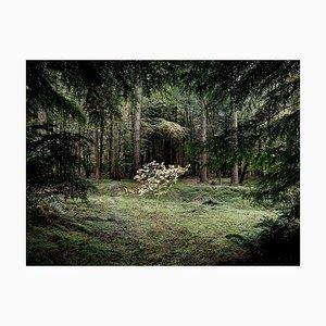 Smoke and Mirrors 4, Ellie Davies, 2010