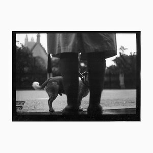 Untitled # 24, Woman and Dog Westminster Von Eternal London, Giacomo Brunelli, 2013