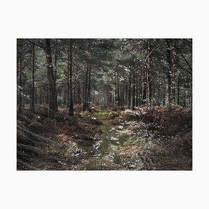 Paesaggi marini 1, Ellie Davies, Fotografia, British Landscape, Water 2020