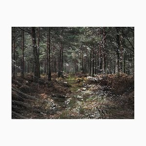 Seascapes 1, Ellie Davies, Photographie, Paysage, Eau, 2020