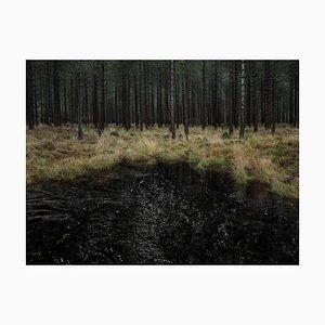 Seascapes 3, Ellie Davies, Photography, British Art, Landscapes