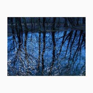 Paesaggi marini 7, Ellie Davies, Fotografia, 2020